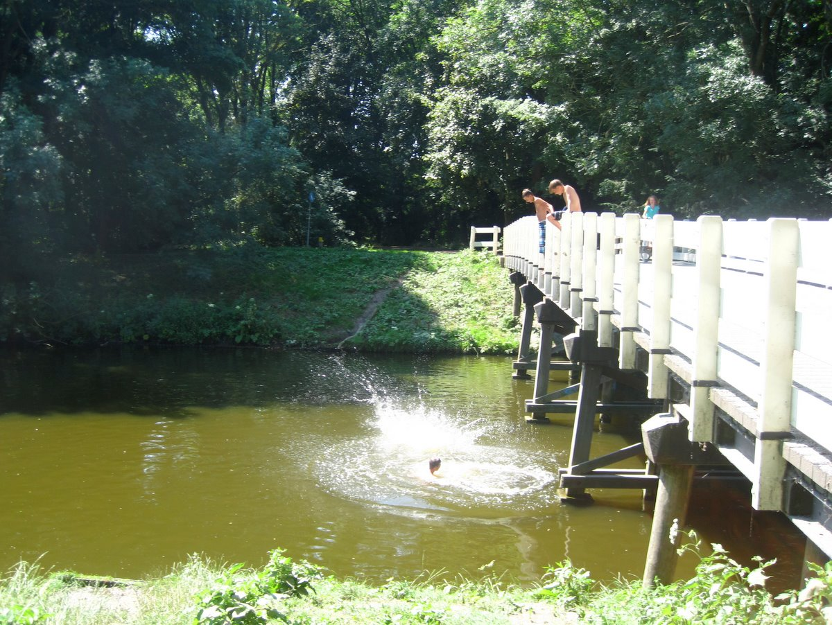 amsterdamse bos swimming