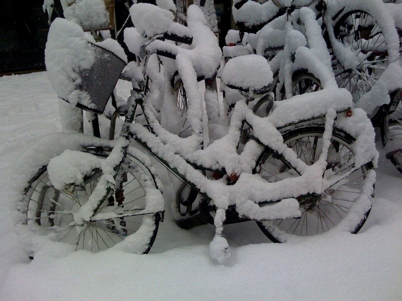 bicycles snow amsterdam winter weather