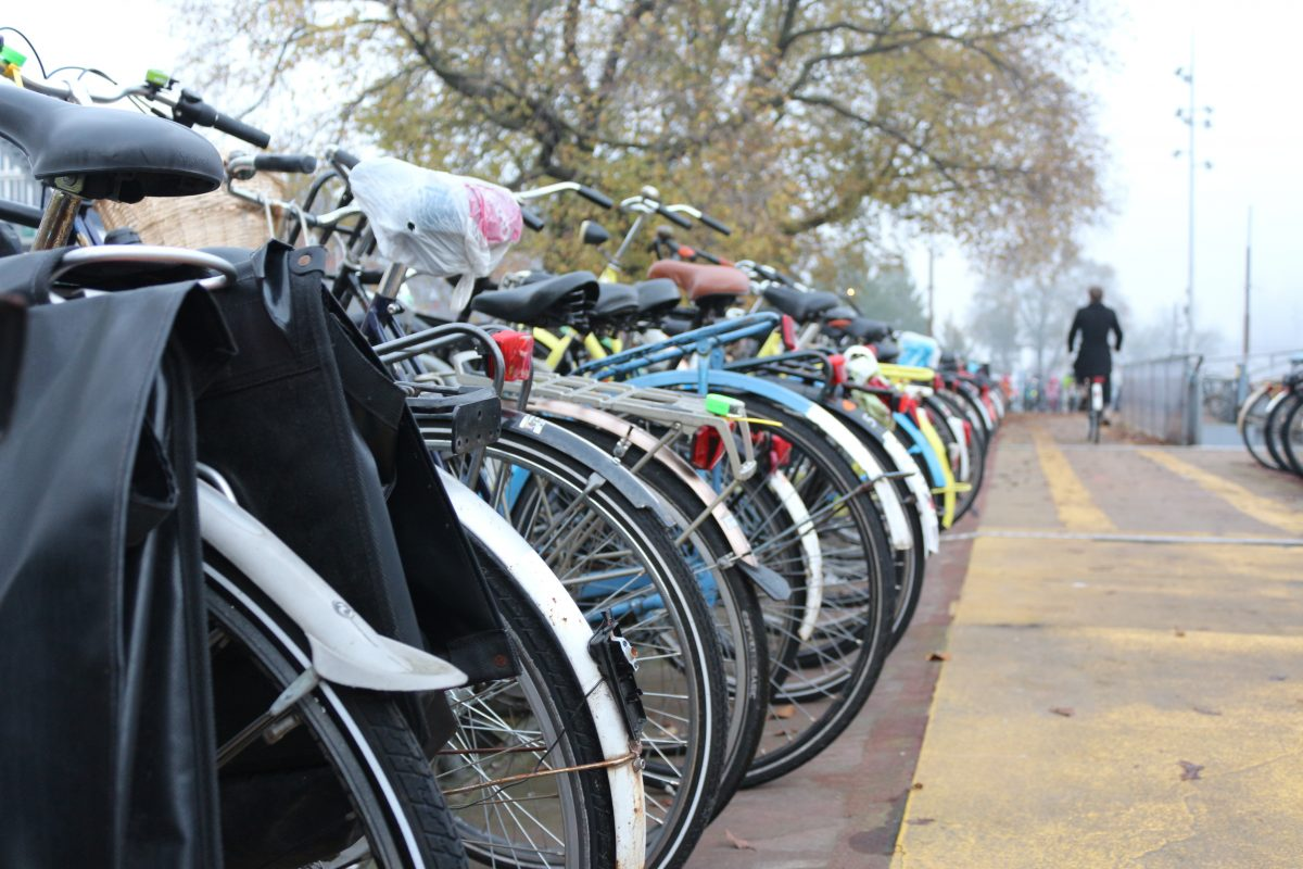 fun facts about bicycles in Amsterdam