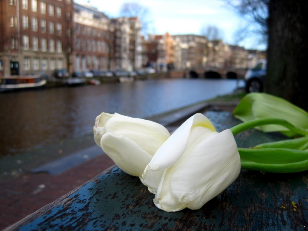 Amsterdam Valentines Day Guide - ideas for a romantic day in Amsterdam- Valentines Day Gifts Amsterdam