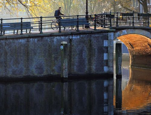 10 Fun Fall Things To Do in Amsterdam in Autumn: colorful leaves, cultural activities, food fests!